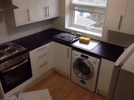 Brand New Nice and Modern Studio Flat in Maryland with separate Kitchen