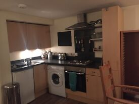 1 bed, self contained basement flat to rent in large Georgian house