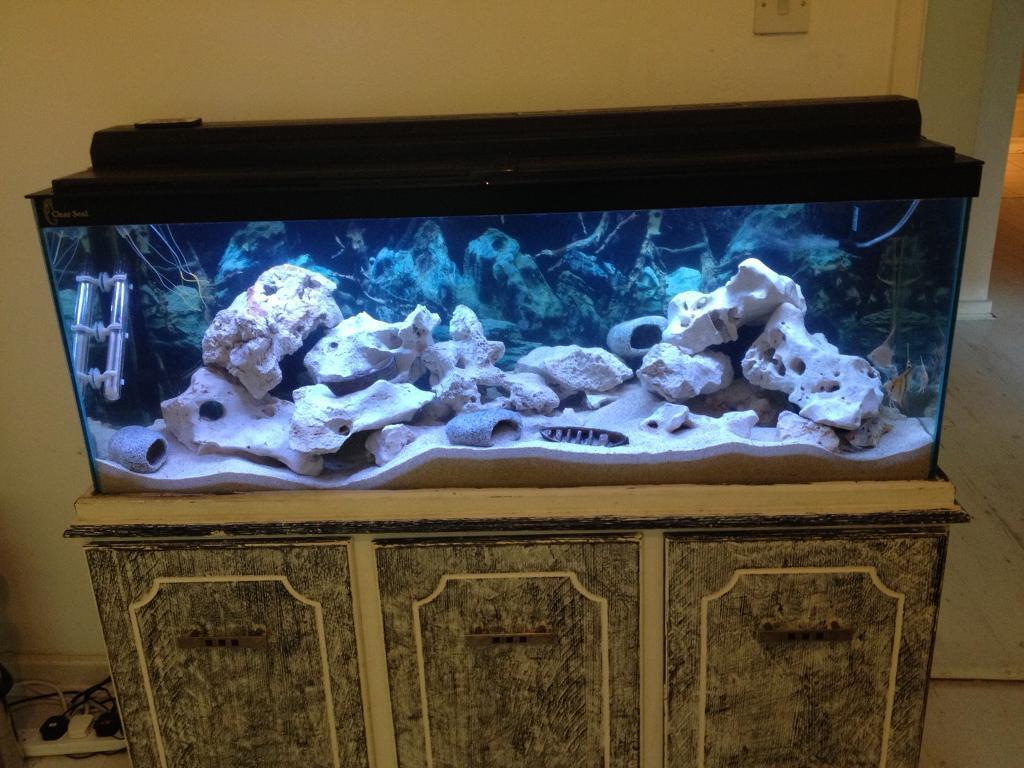 4ft clear seal tank with hood and stand/cabinet