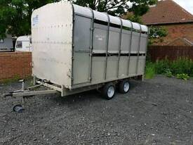 Ifor Williams horse and cattle trailer