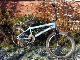 BMX bike Wethepeople