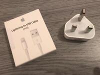 CHRISTMAS GIFT IDEA: Original Apple Lightening USB Cable and USB Power Adapter - Brand New - £40
