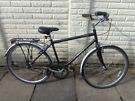 mens 21in raleigh single speed bike with new lights, ready to ride d-lock available
