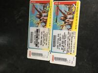 Full weekend ticket (including Wednesday) with camping