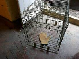 1 dog or cat / animal cage