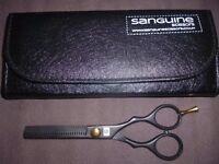 Sanguine Professional Hairdressing Scissors