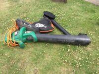 Black & Decker leaf vacuum & blower