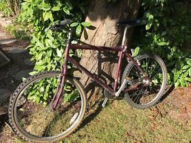 Adults Raleigh bike
