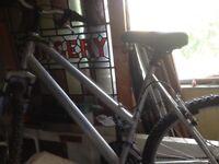 Lady's bike silver