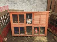 Bluebell Hideaway Hutch for Rabbits and Guinea Pigs