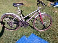 Silverfox Panther Bike