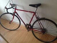 Vintage Road Bike - Laser Custom - Fixie Project
