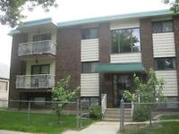 *INCENTIVES*Reno'd Bachelor in Quiet Adult Bldg Near LRT~Pioneer
