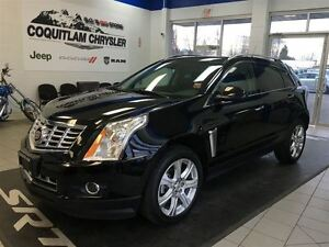 2013 Cadillac SRX Leather Nav DVD Alloy