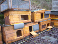 coops robust/plastic less smell rott /mites uns enclosures south side worth viewing