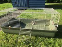 Guinea pig cage, indoor