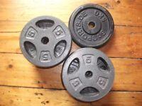 12 x 5kg Standard Cast Iron Weight Plates >£1/kg £50!
