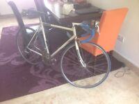 12 Speed road/racing bike