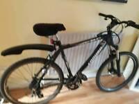 Enduro Mens Mountain bike