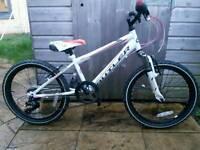 Claude Butler 20 inch Bike
