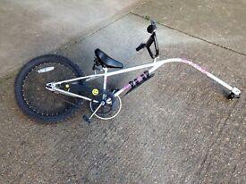 Ride-along Tandem bike
