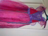 fairy fancy dress with wings