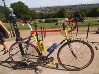 XL 61cm Bespoke Handbuilt Brian Rourke 20speed Racer Campagnolo Centaur Gears and Campagnolo Wheels