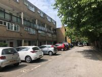 Newly Decorated 3 Double Bed Maisonette With Private Garden, Minutes to Dalston Junction & Canonbury