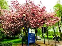 Tour to brighton manchester liverpool Cardiff