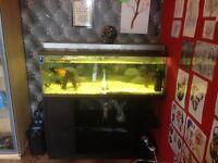 Large aquarium and equipment