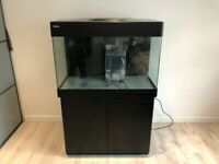 Red Sea Max 250  Reef Marine Fish Tank Aquarium.