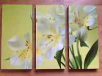 Flower Canvas pictures