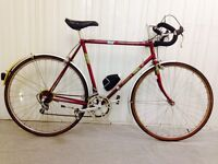 Pro gold Road Bike 10 speed Immaculate Condition