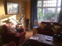 Proffessional 30+ wanted to share large house in nice location near town center and hospital
