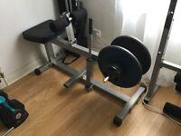 Seated Calf Machine Leg Gym