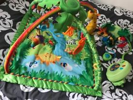 Fisher price rain forest baby play gym and cot mobile.