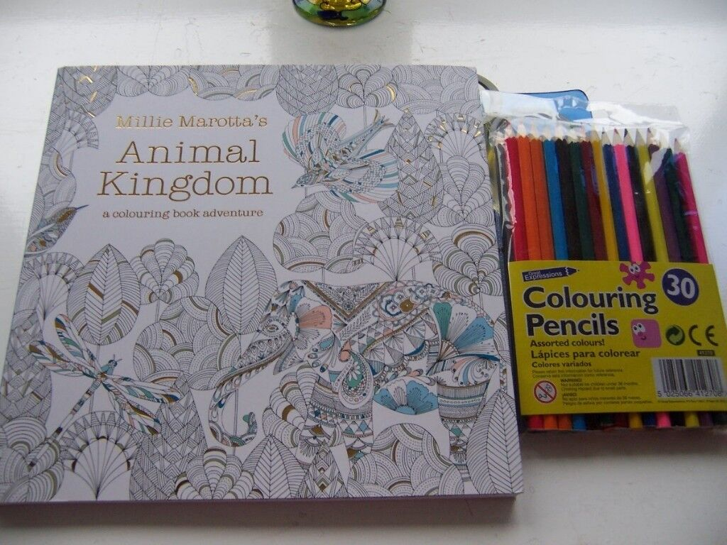 Colouring Book and Pencils