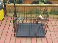 "24"" RAC dog cage for sale."
