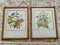 Botanical Prints by Margaret Stones