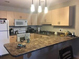 Kitchen cupboards and counter top