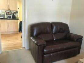 Brown Leather Two Seater Sofa x 2
