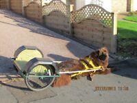 Two wheeled dog cart