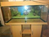 Fish tank, unit and filter