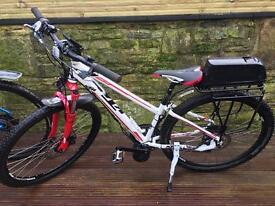 Ladies E-Bike BAFANG 750W