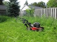 get your grass cut now