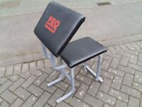 PRO POWER ARM CURL WEIGHTS BENCH