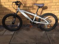 Silver Saracen Bike for a child