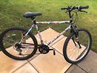 Raleigh men's mountain bike bicycle