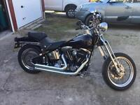 Harley davidson softail 1996 model