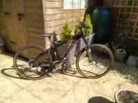 Girls bike Trex 6500